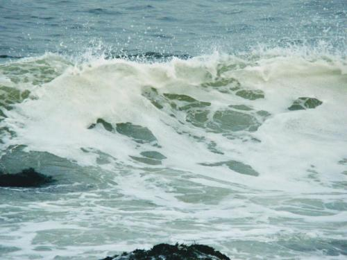 Disturbed Surf