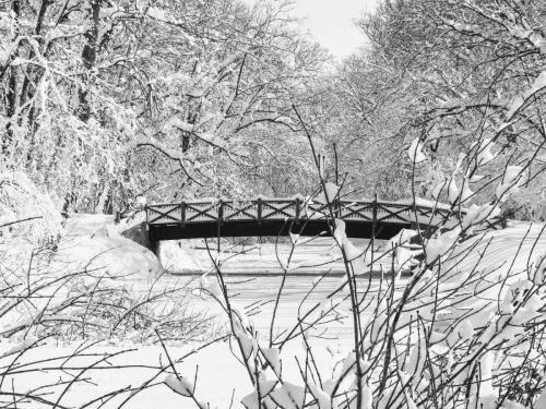Bridge over the TowPath