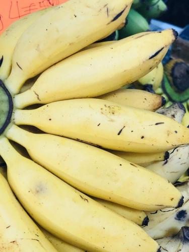 Vivid Produce